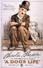 A Dog's Life - 1918