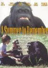 A Summer to Remember - 1985