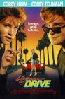 License to Drive - 1988