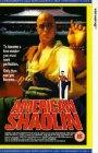 American Shaolin - 1991