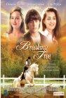 Breaking Free - 1995