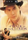 A Walk in the Clouds - 1995