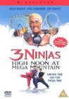 3 Ninjas: High Noon at Mega Mountain - 1998