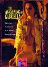 The Awakening of Gabriella - 1999