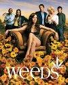 """""""Weeds"""" - 2005"""