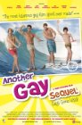 Another Gay Sequel: Gays Gone Wild! - 2008