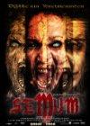 Semum - 2008