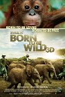 Born to Be Wild - 2011