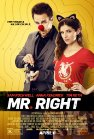 Mr. Right - 2015