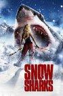 Avalanche Sharks - 2014