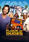 Flock of Dudes - 2016
