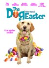 The Dog Who Saved Easter - 2014