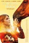 A Sunday Horse - 2016