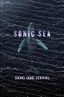 Sonic Sea - 2016
